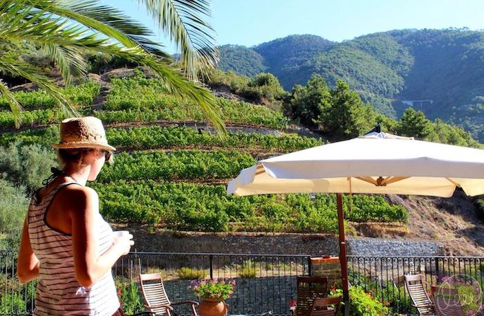 Best cinque terre wine tour